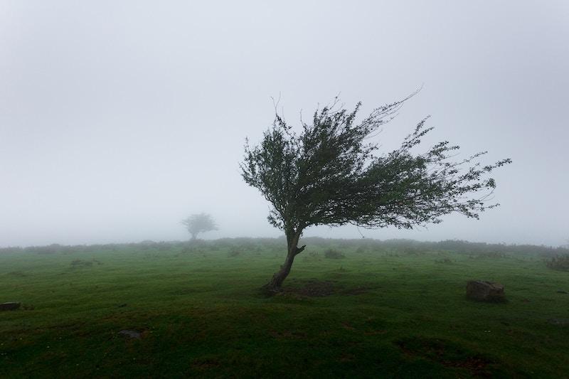 Schutz vor Sturm in der Fertiggarage