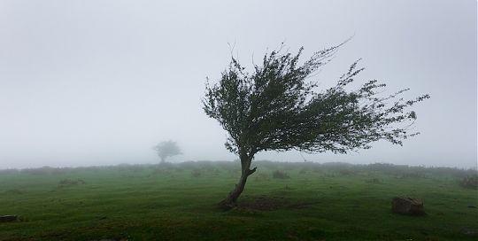 Es wird Herbst: Schutz vor Sturm in derBetonfertiggarage